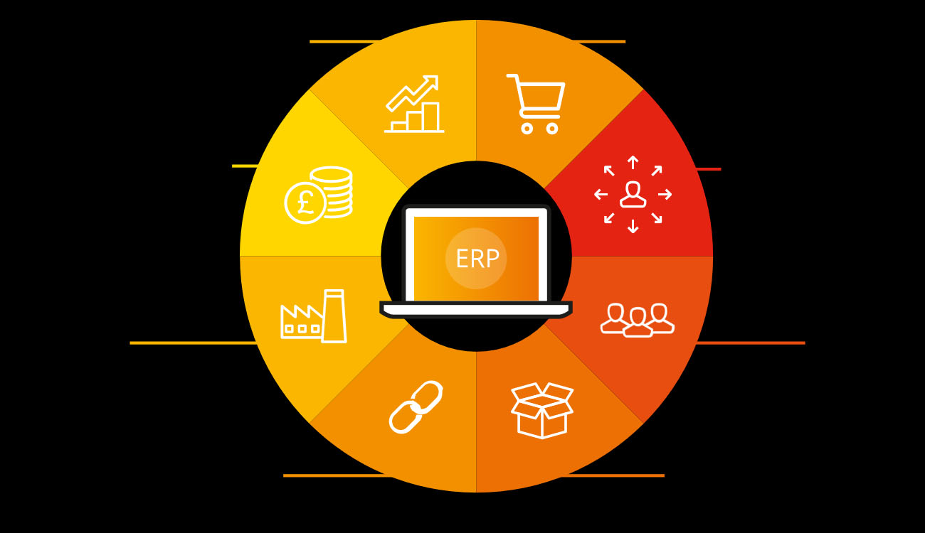 What is an ERP and What are its Functions